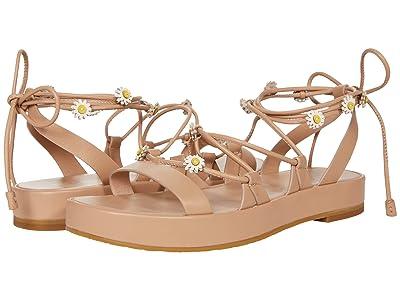 Kate Spade New York Sprinkles