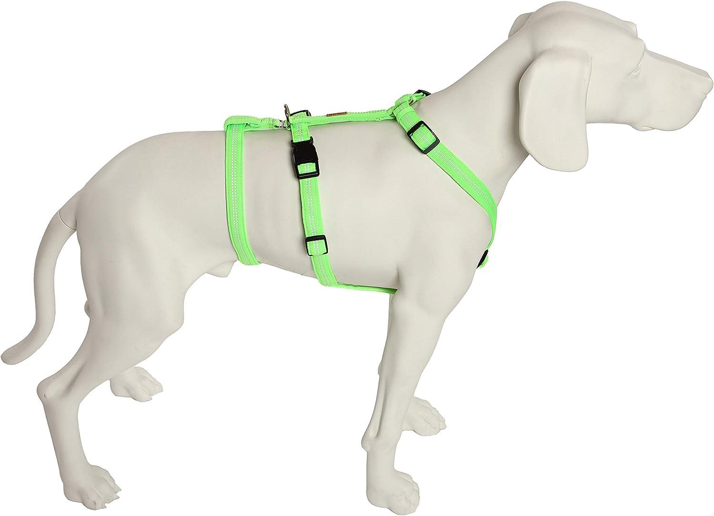 Das Original Noexit Hundegeschirr Zweiter Bauchgurt Abnehmbar Sicherheitsgeschirr Für Pflegehunde Panikgeschirr No Escape Super Soft Neongrün Bauchumfang 40 60 Cm 15 Mm Bandbreite Haustier