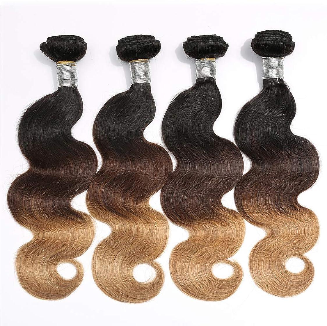 ボランティア飛び込むメタリック女性150%密度ブラジル髪の束実体波1バンドル髪の束実体波人間の髪の毛のグラデーション