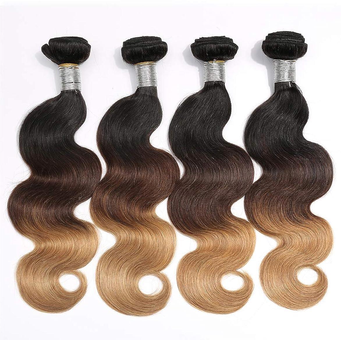 ウイルスそうでなければ電気女性150%密度ブラジル髪の束実体波1バンドル髪の束実体波人間の髪の毛のグラデーション