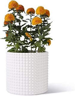 POTEY 056301 Planter Pots Indoor - 8 Inches Ceramic Vintage-Style Hobnail Textured Flower Planter Pots with Drainage Hole ...