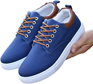 Robert Reyna Trendy Men Canvas Autumn Breathable Lace-Up Casual Men Flat Loafers Big Size