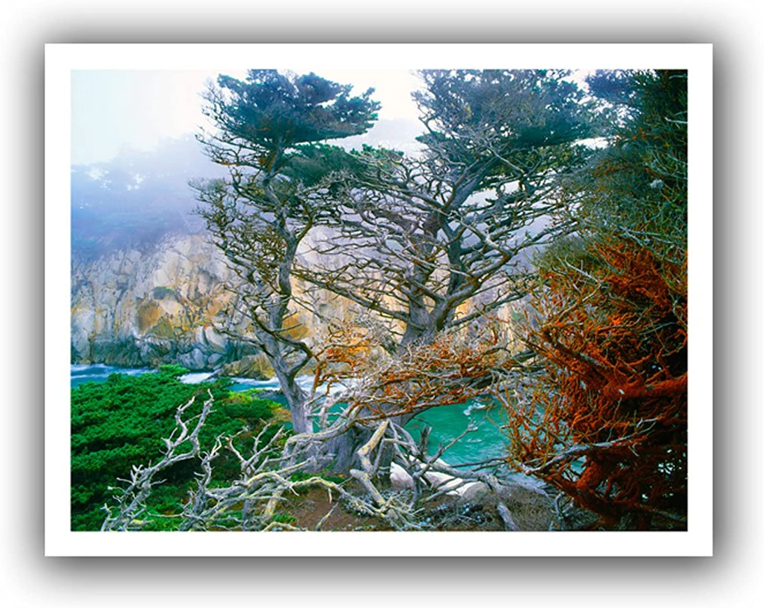 ArtWall Dean Uhlinger Whalers Cove Morning Point Lobos Unwrapped Canvas Art, 18 by 22Inch, Holds 14 by 18Inch Image