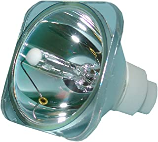 LYTIO Economy for Optoma BL-FU220A Projector Lamp (Bulb Only) BLFU220