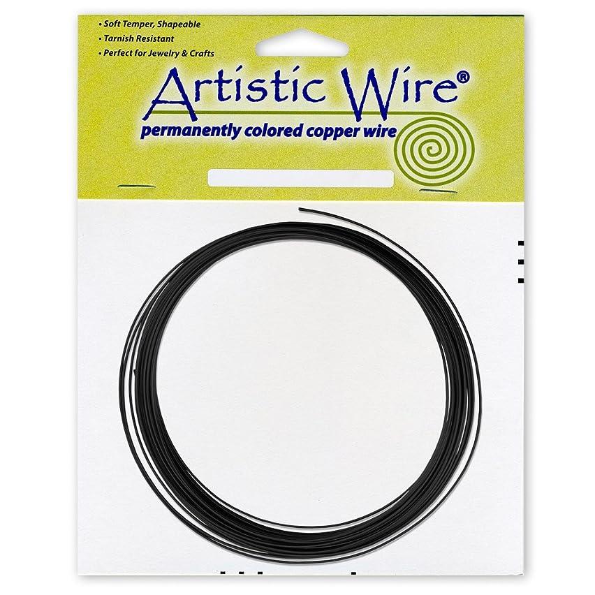 Artistic Wire 14-Gauge Black Coil Wire, 10-Feet