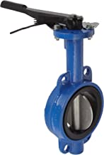 Best 4 flanged butterfly valve Reviews