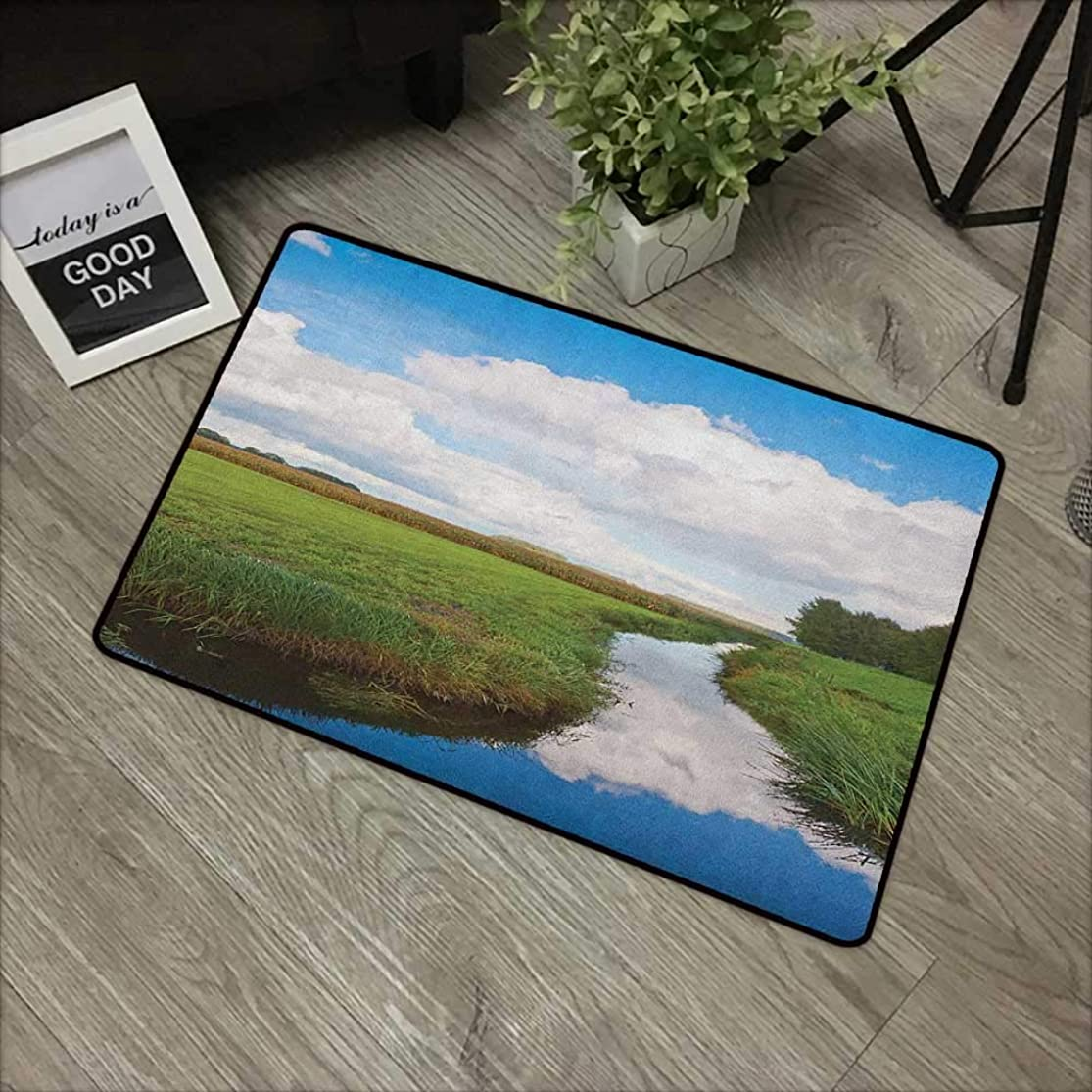 Outdoor door mat W31 x L47 INCH Landscape,Reflective Calm River Scenery Meadow Grass Clouds Wildflowers Trees Shrubs, Green Blue White Natural dye printing to protect your baby's skin Non-slip Door Ma rniwnfwb4
