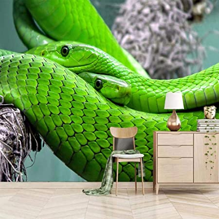YTJBEI Photo Wallpaper Wall Mural -Green Snake Non Woven Wall Mural Adults and Children Teen´s Room Office for Bedrooms 3D Mural Wall Decoration 300 X 210 cm