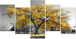 Visual Art Decor 5 Pieces Fall Canvas Wall Art Central Park Tree Picture Prints Black White and Yellow Canvas Decor Artwork for Home Office Living Room Bedroom Decoration Ready to Hang