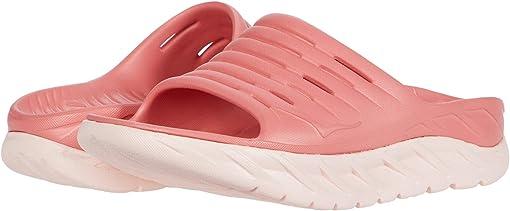 Lantana/Pink Salt
