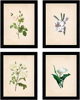 Nacnic Set de Cuatro láminas para enmarcar Estilo botánica. Set Soft White en tamaño A4 Impreso en Papel 250 gr y tintas Fondo Papel Vintage. Flores Tonos claros. Sin Marco.