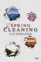 Spring Cleaning: Seasons of Murder (David Lloyd Investigations)