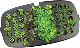 AeroGarden Seed Starting System (all 9pod Gardens)