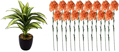 Fourwalls Artificial 24 cm Tall, Dracaena Bonsai Plant in A Ceramic Vase(25 Leaves) + Artificial Synthetic Single Carnation Flower Stick (45 cm Tall, Set of 15, Peach)