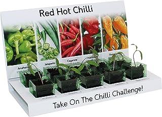 Seed Eco Gifts Red Hot Chilli Grow Kit 100% recyclebar, 5 Sorten zum Selberzüchten
