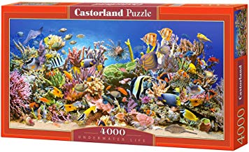 CASTORLAND Underwater Life 4000 pcs Puzzle - Rompecabezas (Puzzle Rompecabezas, Submarino, Niños y Adultos, Niño/niña, 9 año(s), Interior)