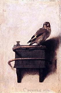 Art Oyster Carel Fabritius The Goldfinch - 16