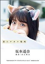 表紙: TEAM SHACHI アートブックコレクションVol.3 猫にチカラ饂飩 坂本遥奈   青山裕企