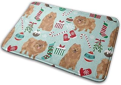"""Pomeranian Dog Cute Pom Dog Christmass Best Petss_18518 Doormat Entrance Mat Floor Mat Rug Indoor/Outdoor/Front Door/Bathroom Mats Rubber Non Slip 23.6"""" X 15.8"""""""