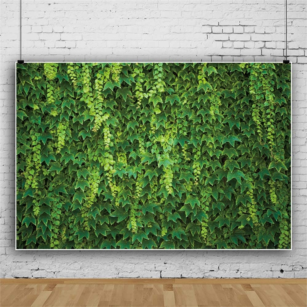 Leowefowa 12x8ft Spring Vibrant Green Ivy Leaves/ Backdrop Vinyl Photography Background Spring Nature Landscape Child Adult Photo Shoot Event Activities Photo Booth Wallpaper Studio Props