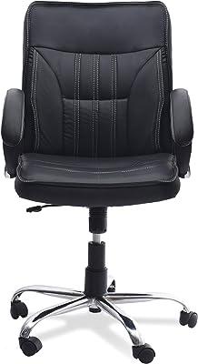 DZYN Furnitures Mahesh Low Back Standard Office Executive Chair (Black)