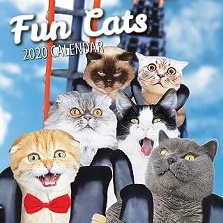 Fun Cats 2020 Cat Wall Calendar