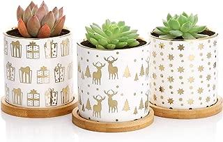 Best ceramic planters for succulents Reviews