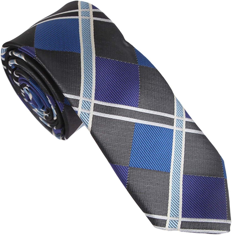 Dan Smith Fashion Slim Necktie Checkered Microfiber Skinny Tie With Box