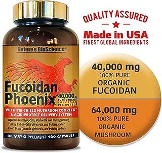 FUCOIDAN Phoenix by Nature's BioScience® : 40,000 mg of Pure Fucoidan + 64,000 mg of Pure Mushroom