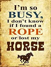 found a rope or lost a horse