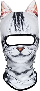 snowboard mask cat