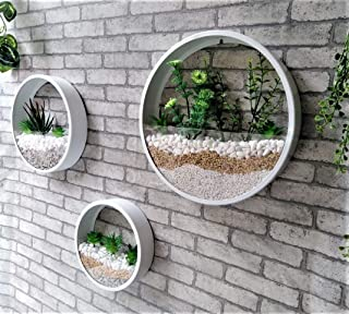 Ecosides Round Wall Hanging Plant Terrarium Iron Planter Wall Hanging Container Succulent Plant Pots Set of 3- in Gift Box,White
