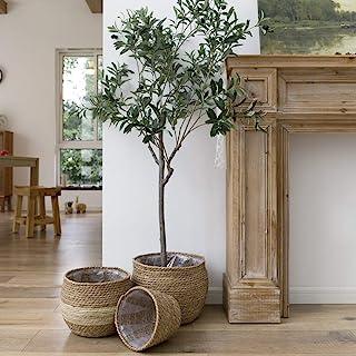 LA JOLIE MUSE Natural Seagrass Planter Set, Plant Pots Cover, Indoor Planters Flower Pots, 13.5 inch Pack 3
