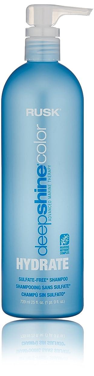 物語ポゴスティックジャンプパッドラスク Deepshine Color Hydrate Sulfate-Free Shampoo 739ml/25oz並行輸入品