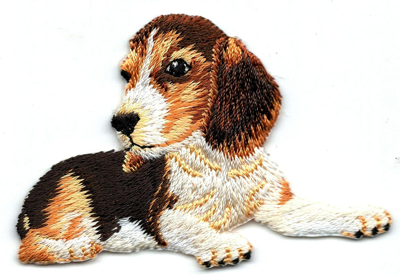 BEAGLE PUPPY Max 88% OFF Iron On Patch Animals Nashville-Davidson Mall Pets Dogs