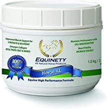 equinity horse supplement