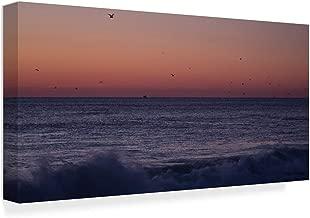 Trademark Fine Art ALI35904-C2447GG Birds Over Ocean Grove by Ian Tornquist Fine Art, 24x47-Inch, Multicolor