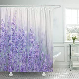 Emvency Fabric Shower Curtain with Hooks Lavender Flowers at Sunlight in Focus Pastel Colors and Blur Violet Lavande Field 60