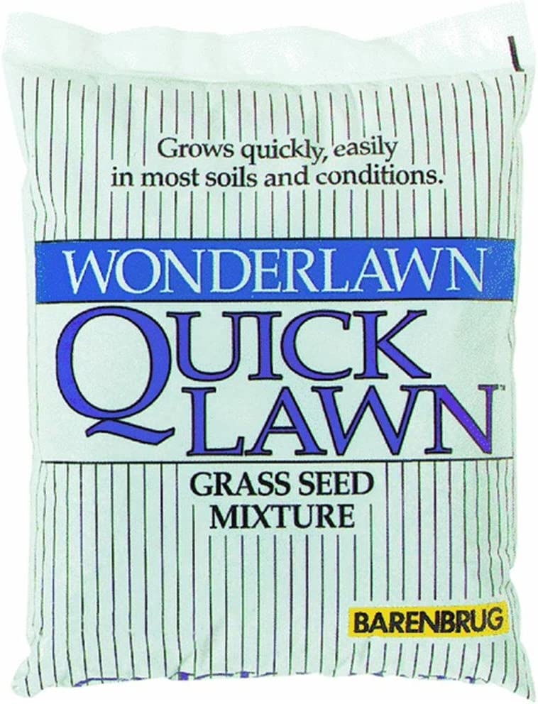 Barenbrug USA 70210 Quick Grass Lawn Max 69% OFF Seed Gifts