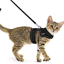 rabbitgoo Pet Harness and Leash for Walking Escape Proof, Soft Mesh Padded Harness for Small Animals, Design with Metal Ri...