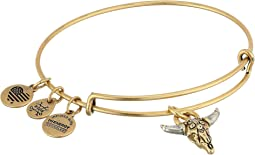 Alex and Ani - Spirited Skull Bangle