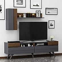 MOON Meuble de salon - Meuble TV avec 2 portes au design moderne (Anthracite / Noyer)