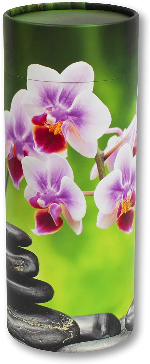 Biodegradable Urn for Scattering Ashes Cardboard and Paper Cremation Urn Silverlight Urns Scattering Tube Mountain View