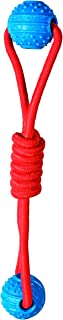 Chase 'n Chomp Barney Fetch Double Ball Tug Toy that Floats