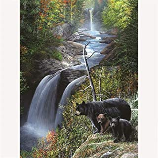 Paint by Number Acrylic Kit on Canvas for Adults Beginner,Bear On the Edge of the Waterfall,16X20 Inch