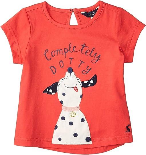 Red Dotty Dog