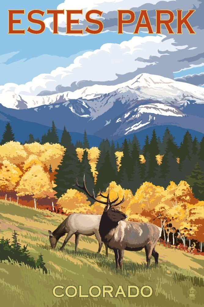 Estes Park Colorado - Elk Max 90% OFF and 36x54 Giclee Gallery Mountains P San Diego Mall
