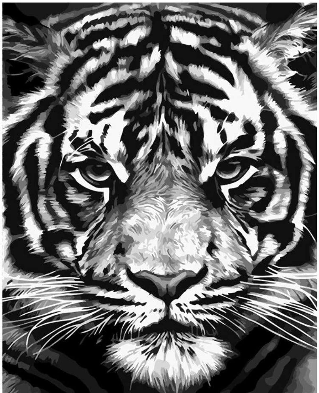Aolala Tier Diy Malen Nach Zahlen Tiger Lion Paint Kits ölgemälde