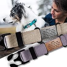 The Pet ID Slate Jingle Free Peace of Mind Dog Tag