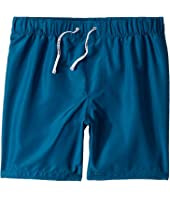 Dolce & Gabbana Kids - D&G Sport Swim Trunks (Big Kids)